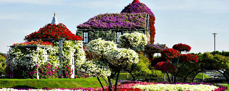 Castle of flowers in dubia miracle garden